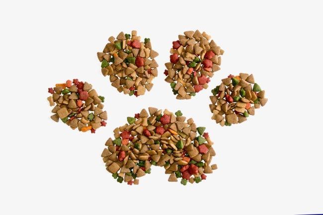 幼猫一天吃多少猫粮?
